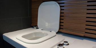 hatria gfull g full wellness wc wc bidet kombination sitzbank in teakholz unsichtbares wc mit. Black Bedroom Furniture Sets. Home Design Ideas